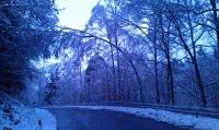 Schneeeinbruch_8